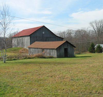 Roaring Run Farm