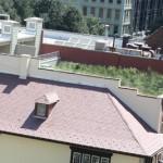 Click For Larger Image - Vegetative Roof